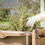 A Photo Of Plant Matter Collected By Recycling Services In Ashland, MA - B-P Trucking Inc