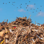 A Picture Of Recyclable Waste Collected By A Removal Service In Ashland, MA - B-P Trucking Inc
